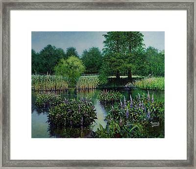 Framed Print featuring the painting Forest Park Pond Scene by Michael Frank