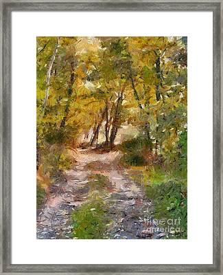 Forest Path Framed Print by Dragica  Micki Fortuna