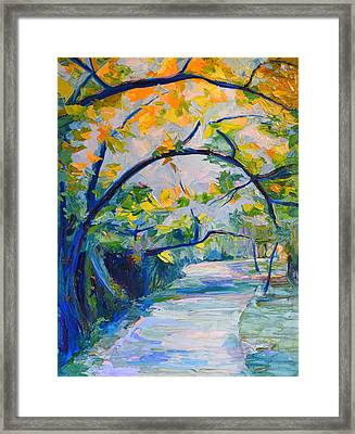 Forest Path Framed Print by Janet Oh