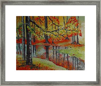 Forest Reflection Framed Print