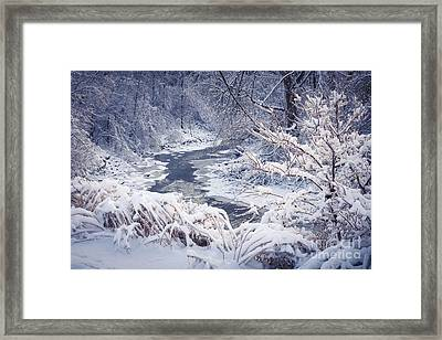 Forest River In Winter Snow Framed Print by Elena Elisseeva