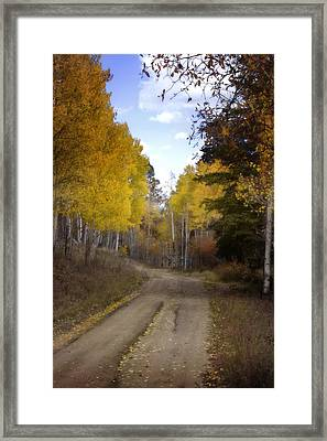 Forest Road In Autumn Framed Print by Ellen Heaverlo