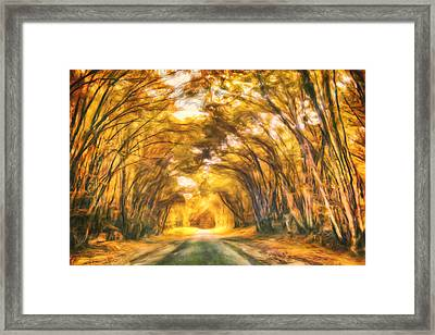 Forest Road Framed Print by Joel Olives