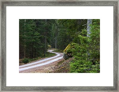 Framed Print featuring the photograph Forest Road by Kennerth and Birgitta Kullman