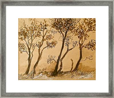 Forest Rythmes  Framed Print
