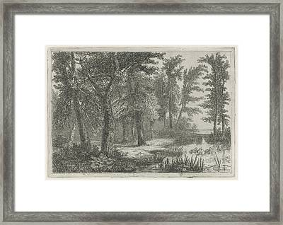 Forest Scene With A Natural Pond With Ducks Framed Print