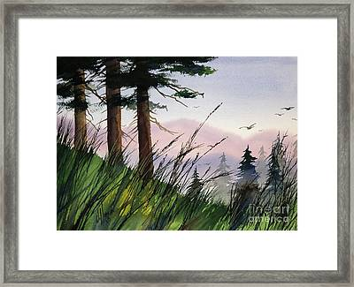 Forest Splendor Framed Print by James Williamson