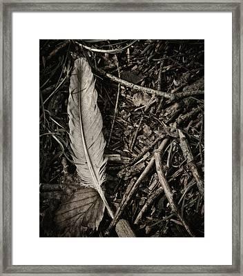 Forest Still Life Framed Print by Odd Jeppesen