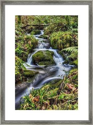 Forest Stream V2 Framed Print by Ian Mitchell