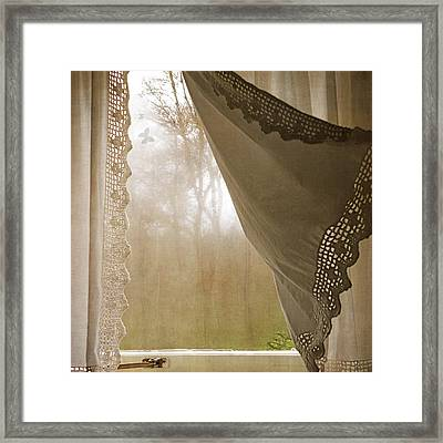 Forest Through The Window Framed Print