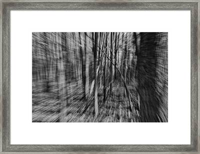 Forest Time B.w Framed Print