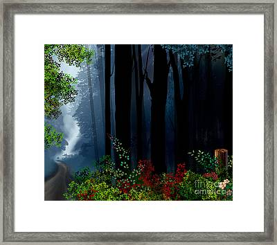 Forest Trail Framed Print