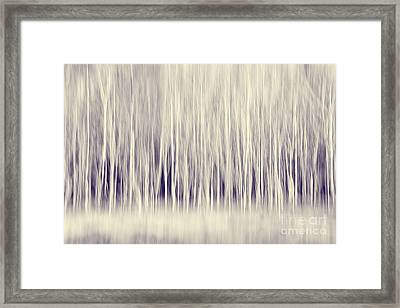 Forest Trees Abstract In Blue Ginger Framed Print by Natalie Kinnear