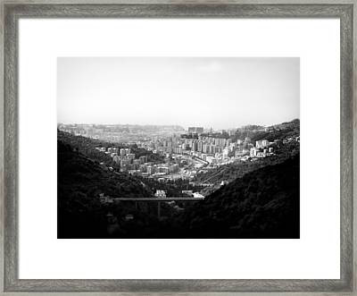 Forest View.. Framed Print by A Rey