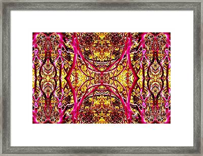 Forest Visions Framed Print