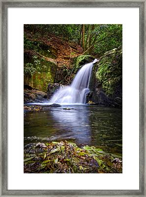 Forest Waterfall Framed Print by Debra and Dave Vanderlaan