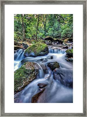 Forest Waterfall Framed Print by John Swartz