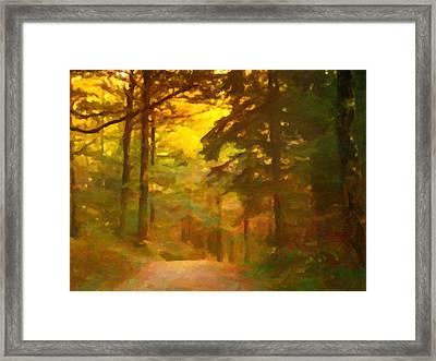 Forestlight Framed Print