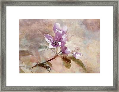 Framed Print featuring the photograph Forever Blossom by Elaine Manley