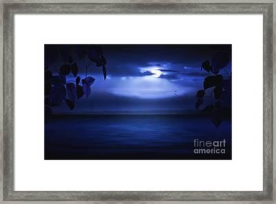 Forever Blue Framed Print by Tom York Images