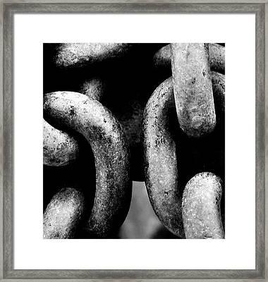 Forever Framed Print by Steven Milner