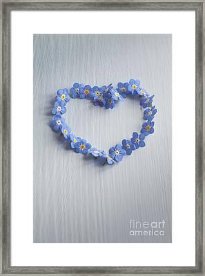 Forget Me Not Heart Framed Print