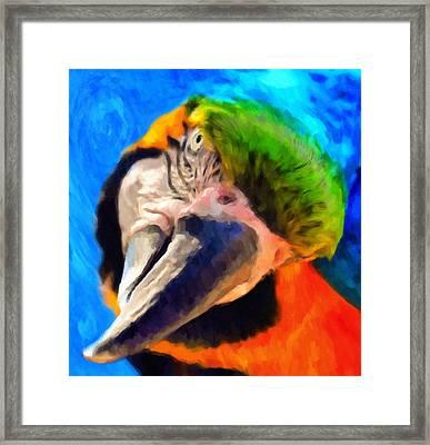 Forget My Beak I'm Beautiful Inside Framed Print