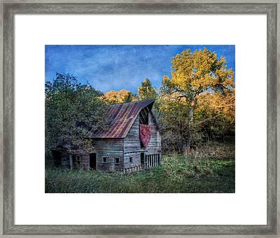 Forgotten Barn Framed Print by Nikolyn McDonald