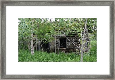 Forgotten Framed Print by David and Lynn Keller