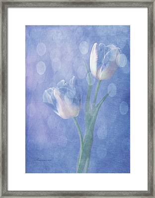 Forgotten Dreams Framed Print by Georgiana Romanovna