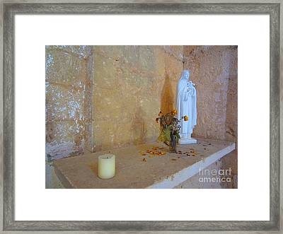 Forgotten Flowers Framed Print by C Lythgo