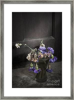 Forgotten Flowers Framed Print by Svetlana Sewell