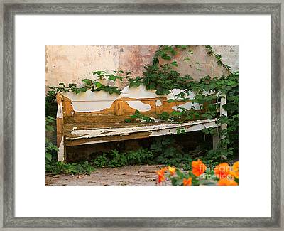 The Forgotten Garden Framed Print
