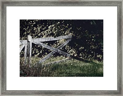 Forgotten Garden Framed Print by Odd Jeppesen