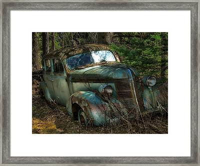 Framed Print featuring the photograph Forgotten In The Forest by Trever Miller