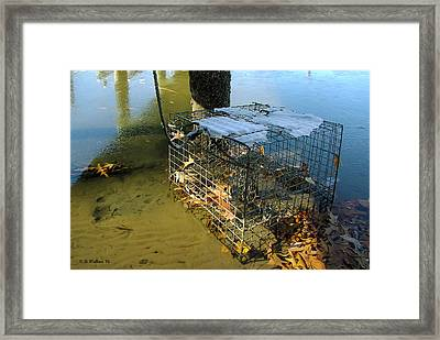Forgotten In Winter Framed Print by Brian Wallace