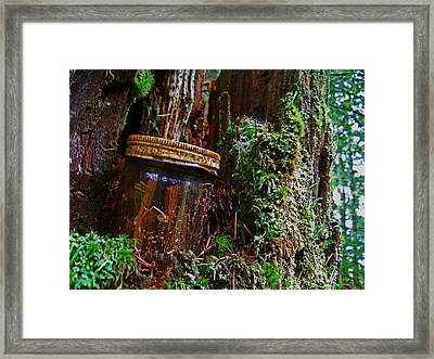 Forgotten Jar Framed Print