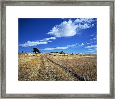 Forgotten Road Framed Print by Julie Magers Soulen