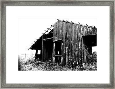 Forgotten Framed Print by Scott Pellegrin