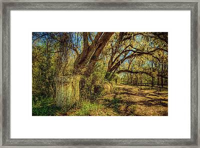 Forgotten Under The Oaks Framed Print