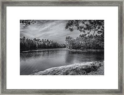 Fork In River Bw Framed Print