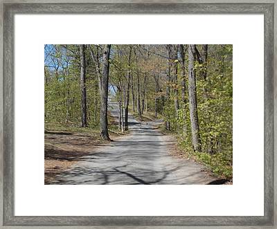 Fork In The Road Framed Print by Catherine Gagne