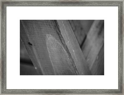 Form And Function Framed Print by Stacie  Goodloe