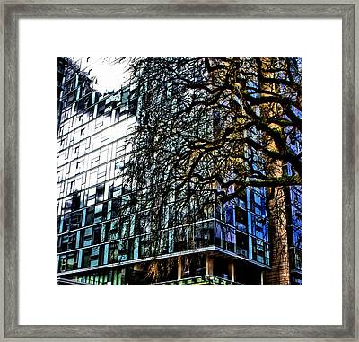 Form V. Function Framed Print