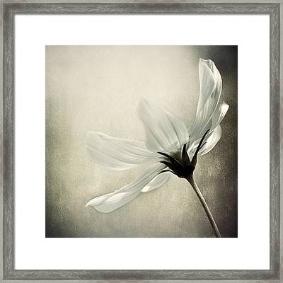 Formal Affair Framed Print