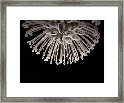 Framed Print featuring the photograph Formation by Susan Maxwell Schmidt