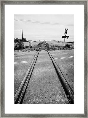 former canadian pacific railway now great sandhills railway crossing highway through leader Saskatch Framed Print by Joe Fox