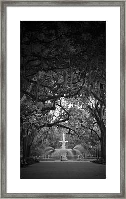 Forsythe Park Framed Print by Amy Larson