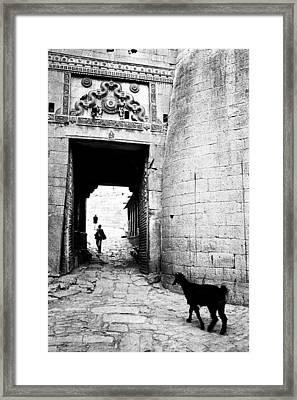 Fort Entrance Gate Framed Print by Jagdish Agarwal