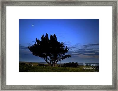 Fort Fisher Moonrise  Framed Print